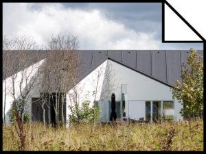 SINUS HOUSE